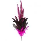 Feder Rosalie  pink
